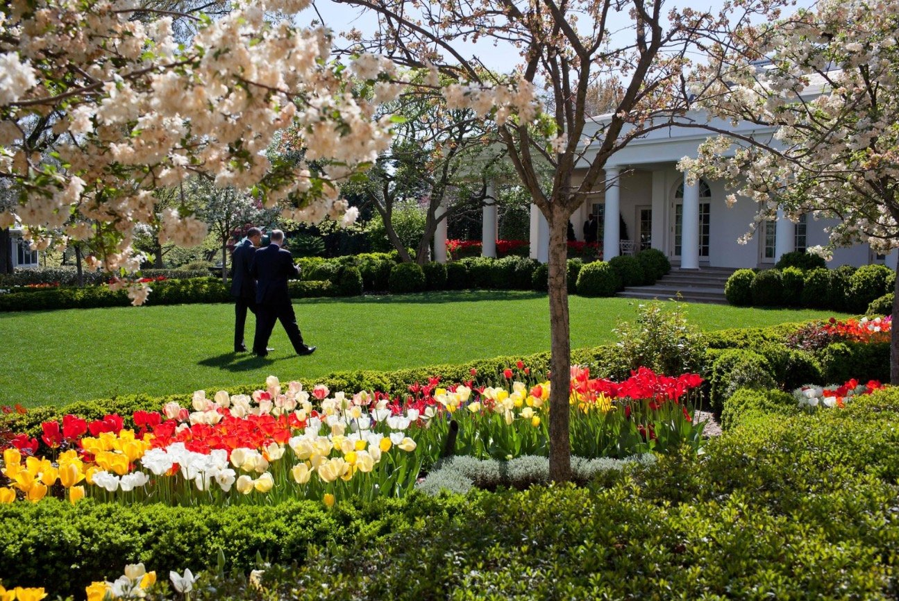 Here Are The Before And After Photos Of Melania Trump S White House Rose Garden Renovations Digg