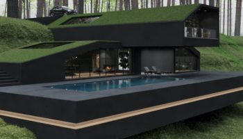 These 3D Renderings Of A Black Villa Tucked Away In The Woods Are Eye-Popping