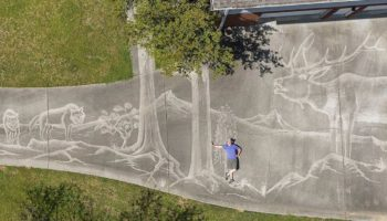 Artist Uses Pressure Washer To Paint Exquisite Wildlife Mural On His Alabama Driveway