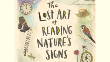 There's So Much Hiding In Plain View — Learn To Read Nature's Hidden Signs