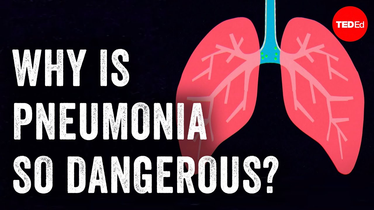 Pneumonia Attacks The Tiny Air Sacs In Our Lungs, Rendering Them Useless
