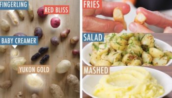 Here's A Useful Guide To Cooking With Every Type Of Potato