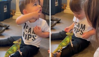 Toddler Gets The Surprise Of A Lifetime When Their Pet Chameleon Steals A 'Kiss'