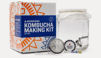 Don't Pay Ridiculous Prices For Kombucha, Make Your Own
