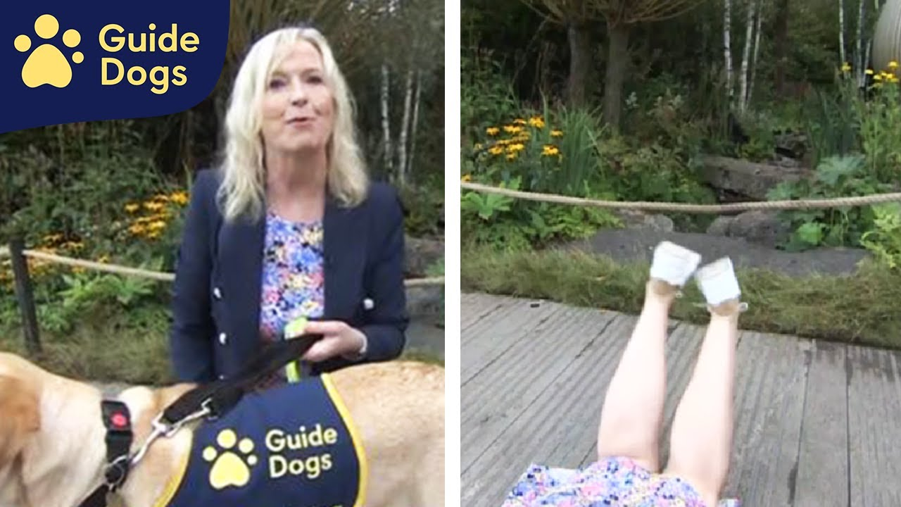 Watch A BBC Weather Reporter Get Pulled Flat On The Ground By An Excited Dog On Live TV