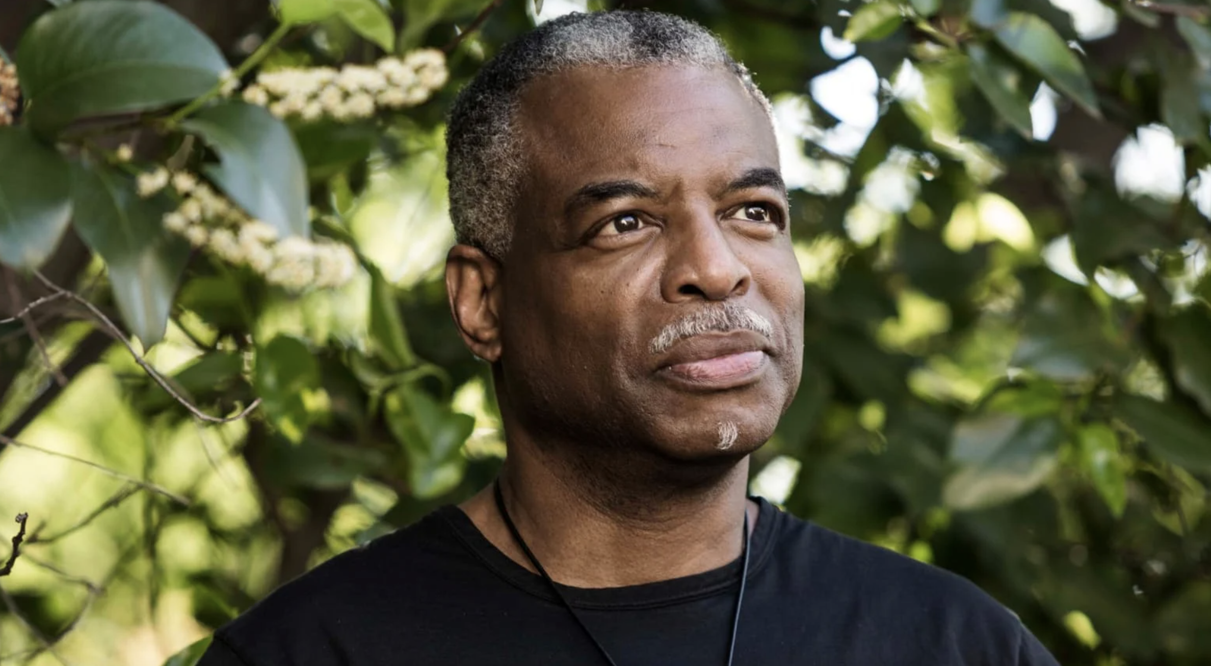 Levar Burton Lost 'Jeopardy!' And He's Totally OK With That